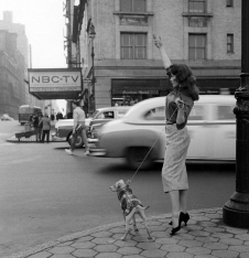 woman-flagging-taxi-cab-with-dog-nbc