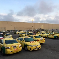 Bayview - The National taxi lot at dawn