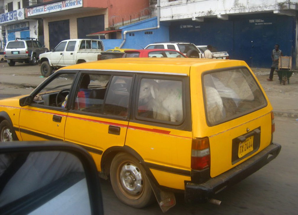 goat-in-Liberia-taxi